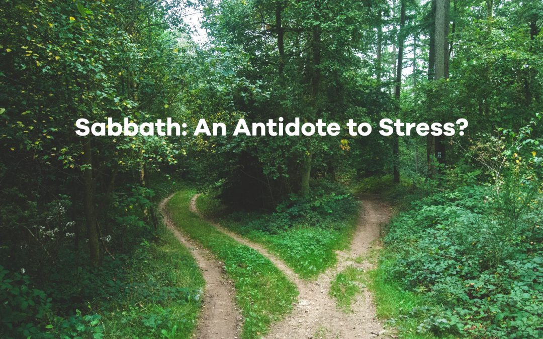 An Antidote to Stress #NationalStressAwarenessDay