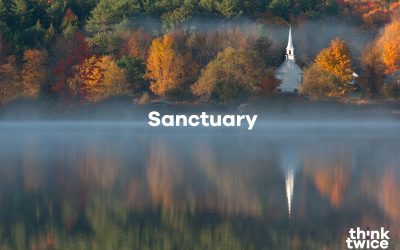 Introducing our Sanctuary Campaign