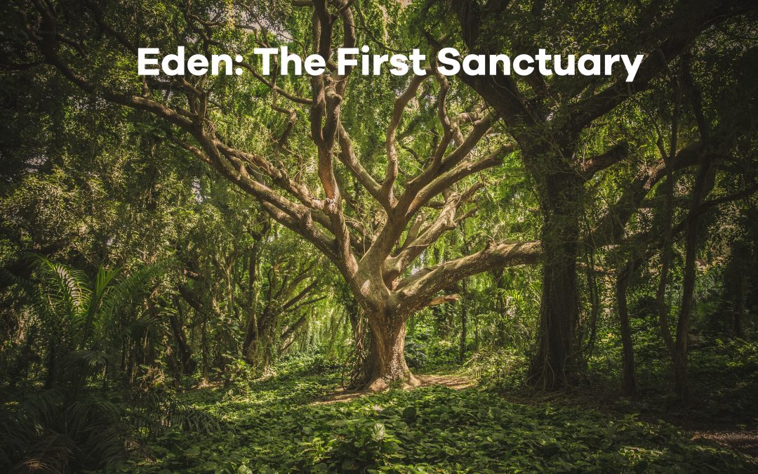 The First Sanctuary